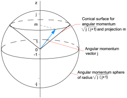 angularmomentuminqm